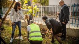 Над 4 хиляди са засадените дървета в София през тази година